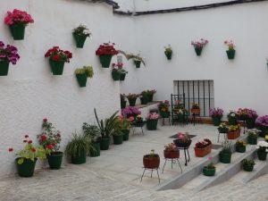 Recorrido por La Puebla de los Infantes